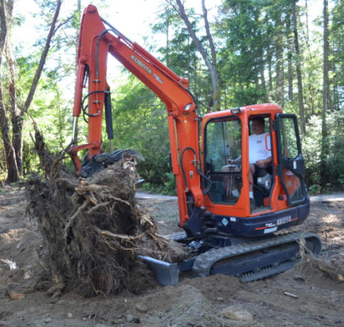 Tacoma stump digging